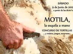 CARTEL LOS SANTOS