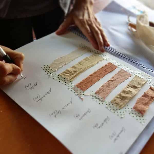 Clasificando muestras de algodón teñidas con tintes naturales
