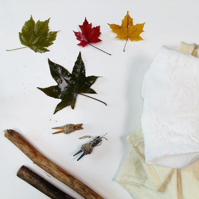 fibras-listas-para-ecoprint_estampacion-botanica