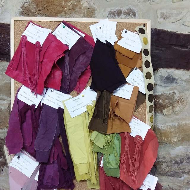 muestras-de-algodon-organico_tintes-naturales_-curso-de-tintes-naturales-en-algodon-de-mundo-lanar-en-the-dyers-house