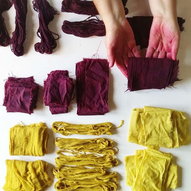muestras-de-algodon-tenido-con-tintes-naturales_-curso-de-tintes-naturales-en-algodon-de-mundo-lanar-en-the-dyers-house