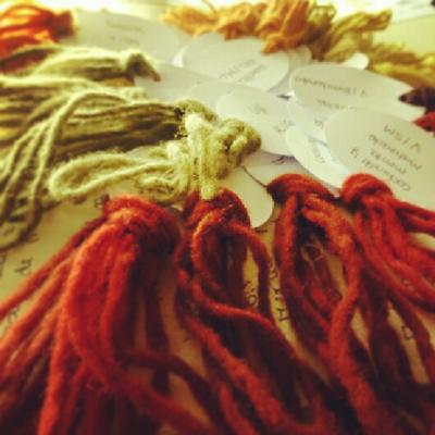 Muestras de lana teñidas de manera natural