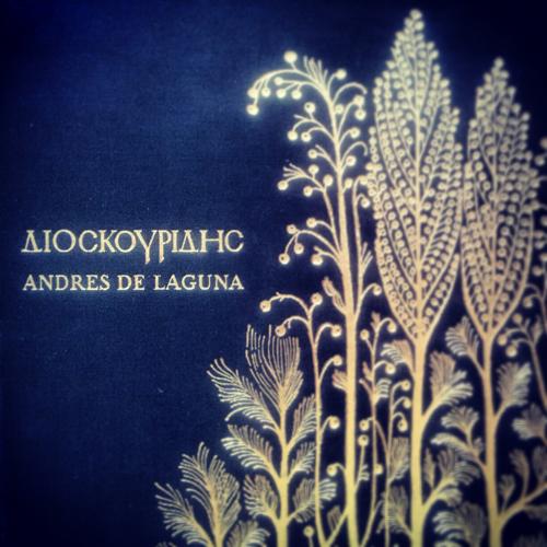 Dioscórides comentado por Andrés Laguna, todo un clásico!