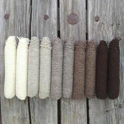 Muestrario de canillas de lanas de Val de San Lorenzo