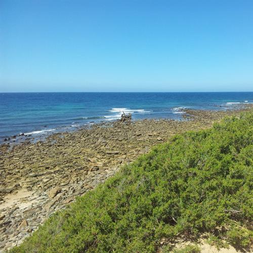 playas vírgenes
