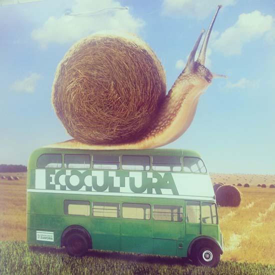 Bus Ecocultura