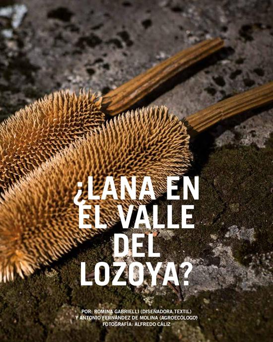 Madrid Comestible_Reportaje Mundo Lanar 1