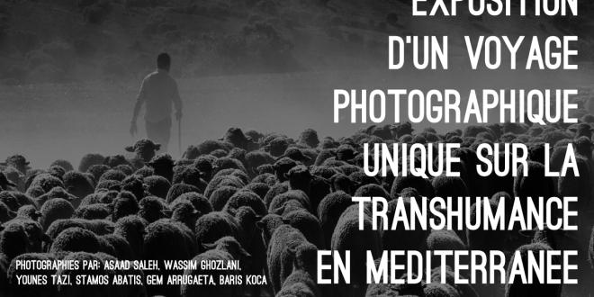 Exposición Un Viaje Fotográfico Sobre la Trashumancia En El Mediterraneo