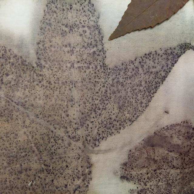 ecoprint-botanical-prints-hojas-de-otono