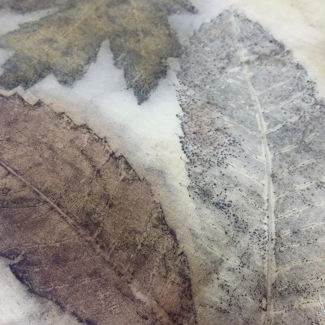 ecoprint-botanical-prints-several-leaves
