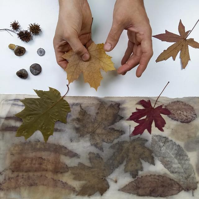 experiemtacion-ecoprint_estampacion-botanica