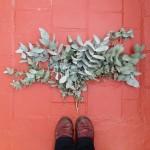 Ecoprint: Diseño Textil con Técnicas de Estampación Botánica