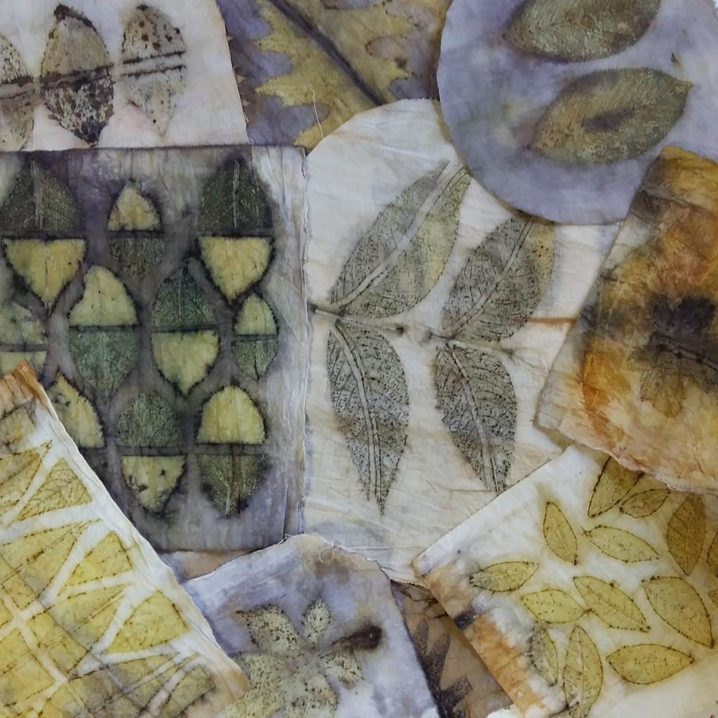 Algodón_Curso de Estampación Botánica en The Dyer's House_Mundo Lanar