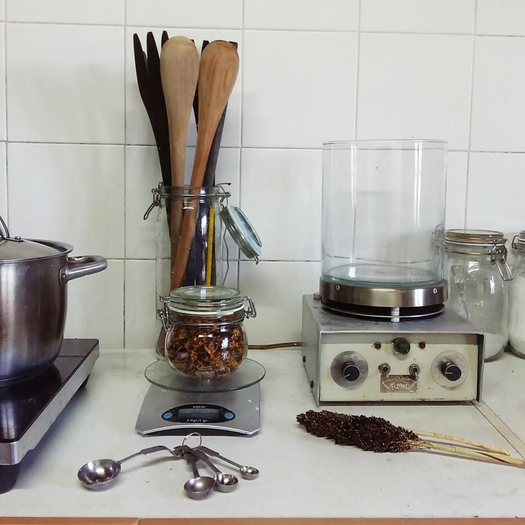 Laboratorio de Tintes Naturales_Cursos en The Dyer's House
